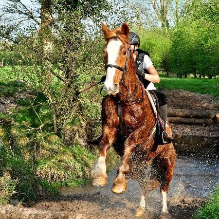 Castleview Equestrian Loughros Point Ardara